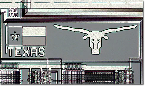 Texas Longhorns (Brightfield)