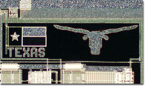 Texas Longhorns (Darkfield)