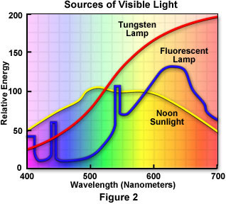White Light May Also Come From A Fluorescent Source, In Which The Light Is  Generated As A Result Of Electrical Current Traveling Through A Charged Gas. Photo Gallery