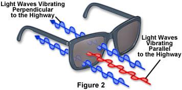 how polarized sunglasses work