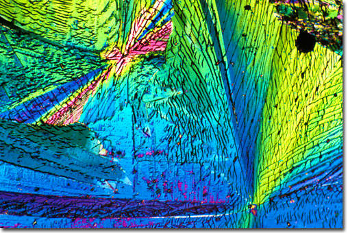 arcoxia laboratorio