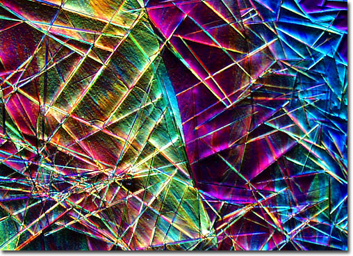 Photograph of butyl phthalide under the microscope