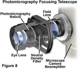 Molecular Expressions Microscopy Primer Anatomy Of The