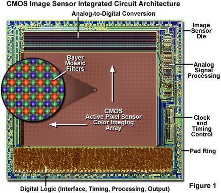 Molecular Expressions Microscopy Primer Digital Imaging
