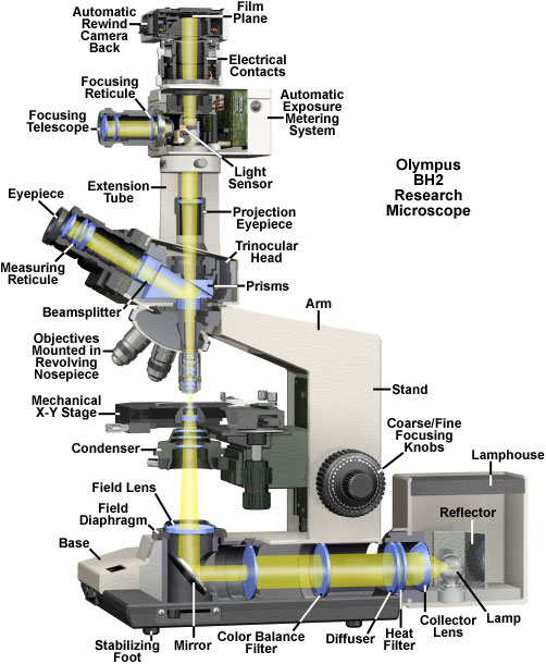 Molecular Expressions Microscopy Primer Microscope