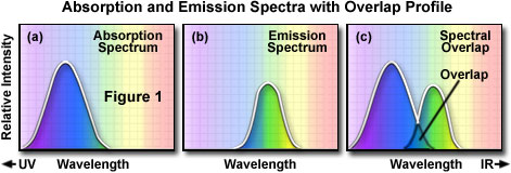Overview Of Excitation And Emission Fundamentals