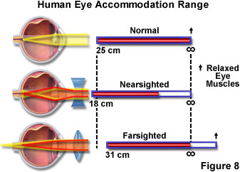 external image humanvisionfigure8.jpg
