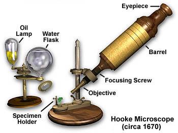 Hooke mikroskobu