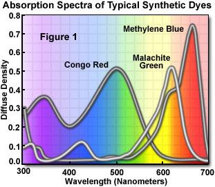 Molecular Expressions Microscopy Primer Photomicrography