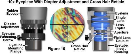 molecular expressions microscopy primer: specialized