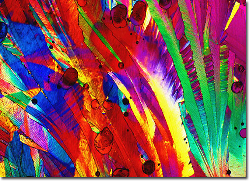 Photograph of Pangamic Acid under the microscope